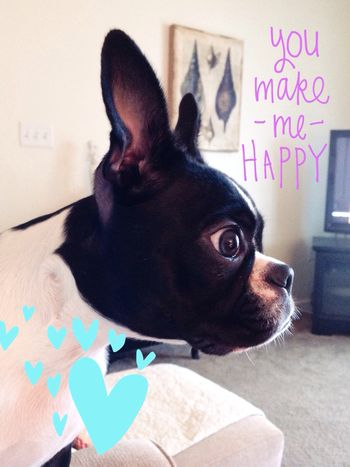 You make me happy!
